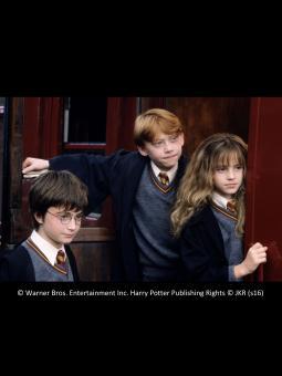Harry Potter und der Stein der Weisen - in Concert – 02.04.2017 (So), 18:30