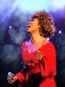 Simply The Best - Die Tina Turner Story – 16.01.2020 (Do), 20:00 Uhr